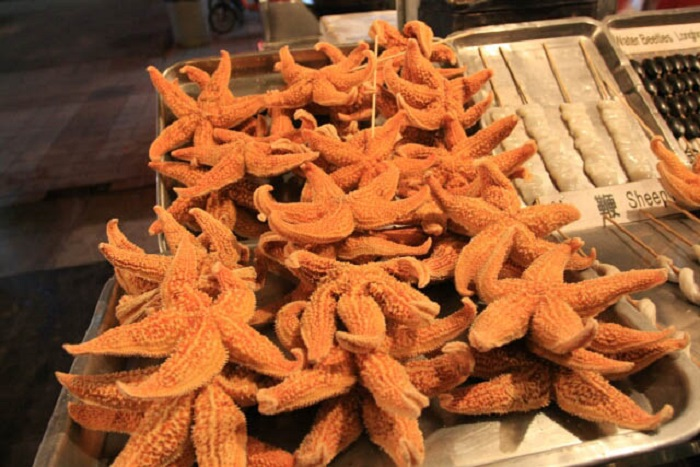can you eat starfish battersby 4